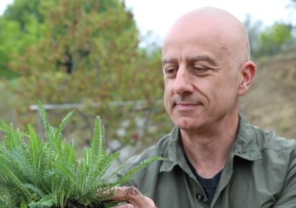 Christophe Bernard, de l'appel des plantes à AltheaProvence